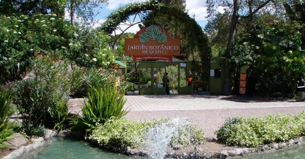 Los 21 mejores lugares tur sticos de quito para visitar for Jardines verticales quito ecuador