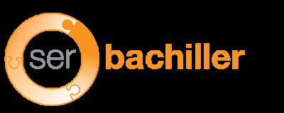 Ser Bachiller 9090 - Ingresar a la plataforma (Public Login)