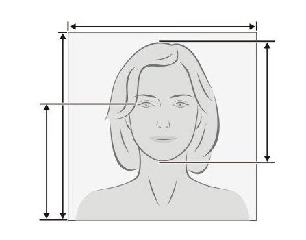 Tamano De Una Foto Carnet Medidas En Cm Mm Y Pixeles Foros